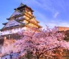 Tour Osaka – Nara – Kyoto – Núi Phú Sỹ - Tokyo