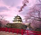 Tour Tokyo – Fuji Mountain