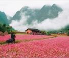 Tour Hà Nội - Hà Giang – Lũng Cú – Đồng Văn – Mèo Vạc – Tuyên Quang